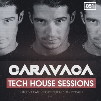 Сэмплы Bingoshakerz Caravaca Tech House Sessions