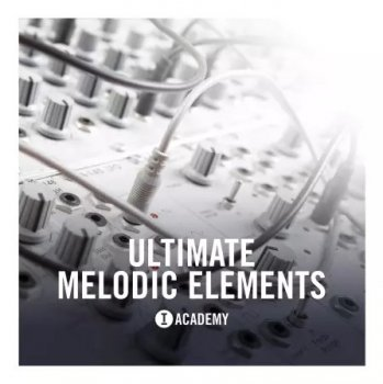 Сэмплы Toolroom Academy Ultimate Melodic Elements