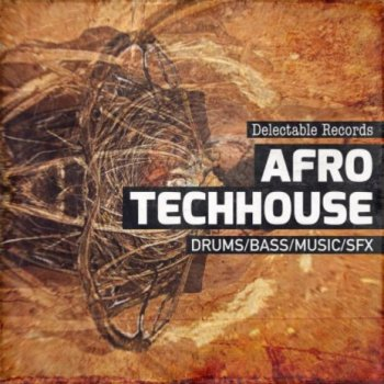 Сэмплы Delectable Records Afro TechHouse 01