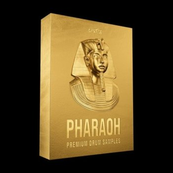 Сэмплы Cymatics PHARAOH Premium Drum Samples