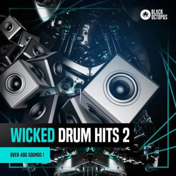 Сэмплы Black Octopus Sound Wicked Drum Hits 2