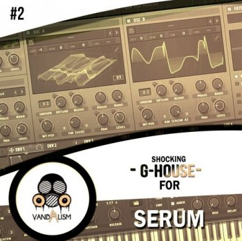 Пресеты Vandalism Shocking G-House 2 for Serum