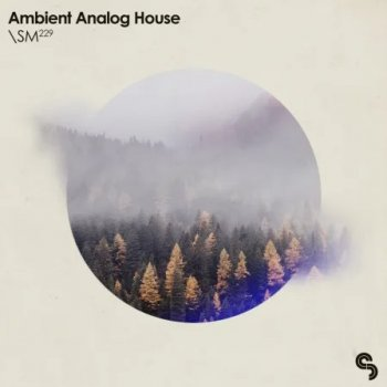 Сэмплы Sample Magic Ambient Analog House