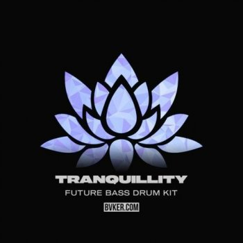 Сэмплы BVKER Tranquillity Future Bass Drum Kit